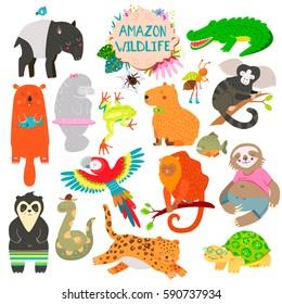 Image of: Safari Cute Animals Collection Baby Animals Amazon Animals Spider Parrot Crocodile Shutterstock Amazon Rainforest Spider Stock Illustrations Images Vectors