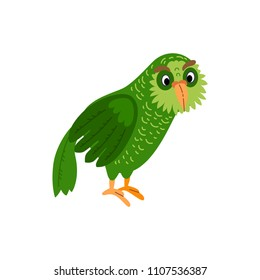 Cute animals - kakapo owl parrot. Illustrations for children. Baby Shower card. Cartoon character bird isolated on white background. Tropical animal wildlife