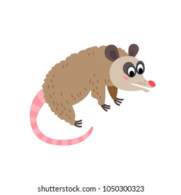 Cute animals - opossum. Illustrations for children. Baby Shower card. Cartoon character rodent isolated on white background. South America animal wildlife
