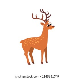 Cute animals - red deer. Illustrations for children. Baby Shower card. Cartoon character reindeer isolated on white background. Europe and Asia animal wildlife