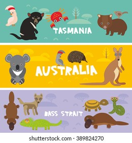 Cute animals set, Echidna koala Platypus Tasmanian devil Cockatoo parrot Wombat snake crab turtle kangaroo dingo kids background Australia, Tasmania Australian animals bright colorful banner. Vector