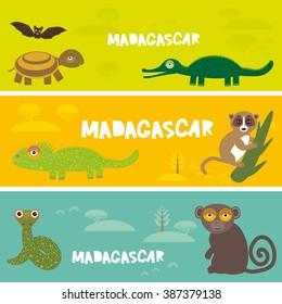 Cute animals set Turtle bat crocodile chameleon snake lemur, kids background African animals, Africa Madagascar bright colorful banner. Vector