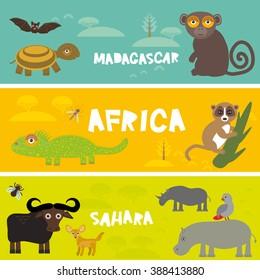 Cute animals set Turtle bat monkey lemur bull hippo parrot tsetse fly camel Chameleon Fennec fox, kids background African animals, Africa, Madagascar, Sahara Desert bright colorful banner. Vector