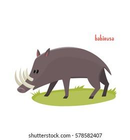 Cute babirusa in cartoon style. Vector illustration of wild animal isolated on white background. Cute zoo alphabet.