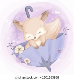 cute baby fox sleep on umbrella