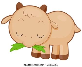 Cute Baby goat munching grass - Vector