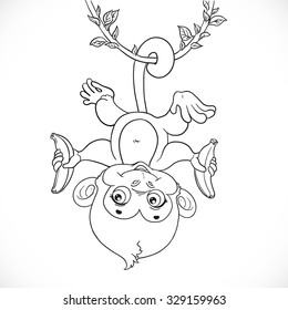 Cute baby monkey with banana hanging on the liana outlined isolated on a white background