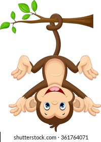 Cute baby monkey hanging on tree
