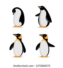 Cute Baby Penguin cartoon in different poses. Vector illustration.