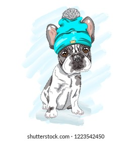 Cute baby puppy dog cartoon hand drawn vector illustration. Can be used for baby t-shirt print, fashion print design, children wear, baby shower celebration, greeting and invitation card.