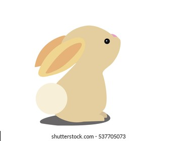 cute baby Rabbit isolated on a white background