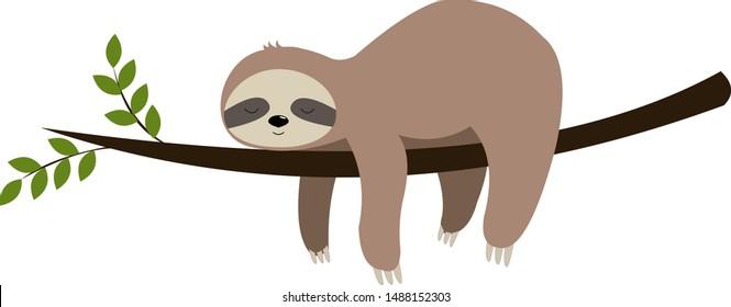 Cute baby sloth vector illustration sleeping