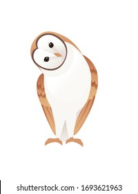 Cute barn owl (tyto alba) with white face and brown wings cartoon wild forest bird animal design flat vector illustration isolated on white background