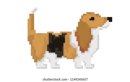 Cute Basset hound dog pixel art . Vector illustration