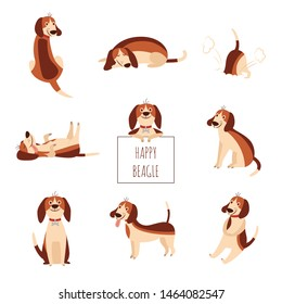 Cute beagle dog or puppy set of flat cartoon vector illustration isolated on white background. Funny animal pet collection for prints and children items design.