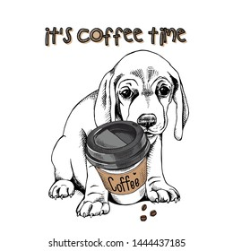 Cute Beagle puppy with a plastic cup of coffee. It's coffee time - lettering quote. Humor card, t-shirt composition, hand drawn style print. Vector illustration.