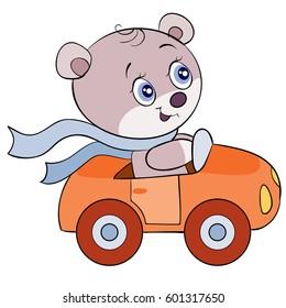 Cute bear is driving a car
