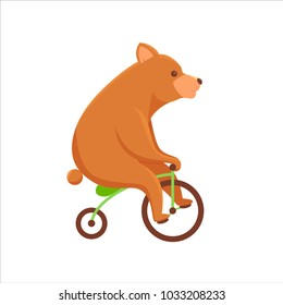cute bear riding bicycle, circus bear riding bicycle