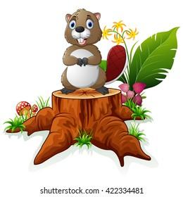 Cute beaver posing on tree stump