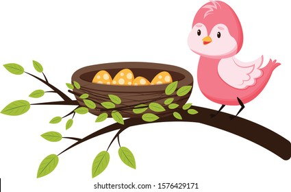 Cute bird on a branch near the nest with eggs. Spring greeting card in cartoon style. Template for greeting card, print for clothes, for newborns. Isolated on white background.