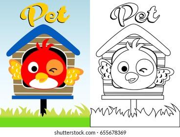 cute bird on cage, vector cartoon, coloring book/page