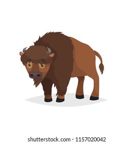 Cute bison standing. Cartoon comic style vector illustration of forest wild animal. Buffalo. Europe and north America animal.