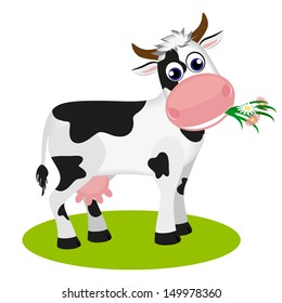 Cute black and white cow eating daisy, isolated on white vector illustration.