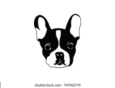 Cute Black & White French Bulldog for T Shirt