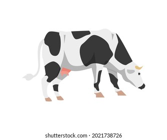 Cute black and white spotted cow. Holstein frisian breed domestic cattle for milk, dairy products and meat. Flat cartoon vector illustration isolated on white