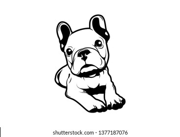 Cute Blue French Bulldog is waiting for someone to feed him. A character cartoon can develop to your design.