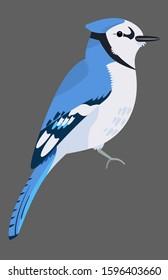 Cute Blue Jay bird icon. Sitting animal sign. Minimal flat geometric style winter birds of woodland, backyard. Birdwatching element design idea.