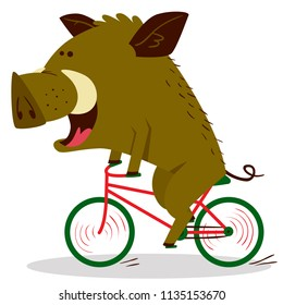Cute boars or warthog character riding a bicycle. Vector illustration with pig driving bike. Forest inhabitant in cartoon flat style. Chinese horoscope personage