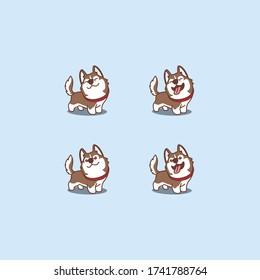 Cute brown siberian husky dog cartoon set, vector illustration