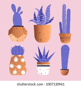 Cute cactus in copper pots in trendy colors