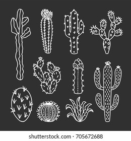 Cute cactus illustrations. Hand drawn outline cacti and succulents drawings