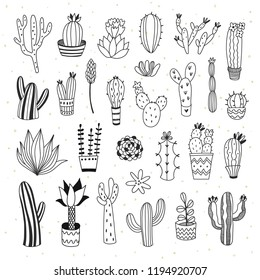 Cute cactus and succulents collection with doodle outline illustrations. Botanical set with different cacti