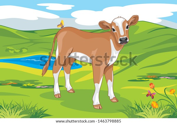 cute-calf-on-landscape-background-600w-1