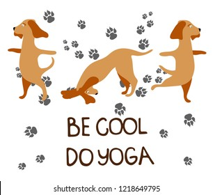 Cute card. Be cool do yoga. Sweet dog Design for banner, card, placard, brochure