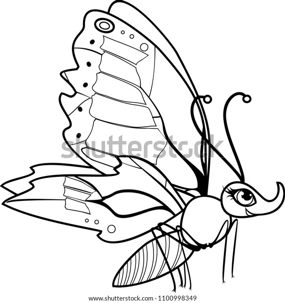 Vector coloring page outline of cartoon butterfly coloring book ... | 620x583