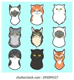Cute  Cartoon Cats faces set Exotic cat, black cat, siamese cat, scottish fold cat, maine coon cat ,persian cat, american short hair, British Short hair, Japanese Bobtail on field of grass