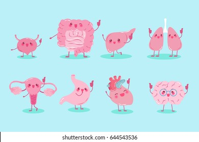 cute cartoon different organ show thumb up to you