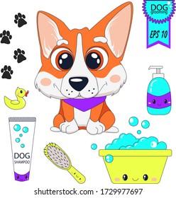 Cute cartoon dogs clipart. Welsh Corgi. Hand drawn. Grooming. Dog care element. Vector illustration