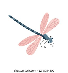 cute cartoon dragonfly character