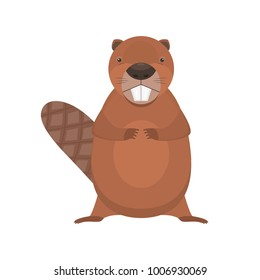 Cute cartoon flat vector standing beaver character. Funny brown beaver with two big teeth. Fat animal icon isolated on white background