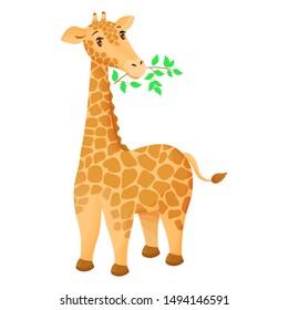 Cute cartoon giraffe eats a twig with leaves