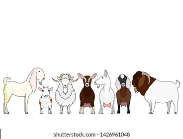 cute cartoon goat breeds group