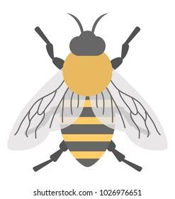 A cute cartoon honey bee, flat design icon