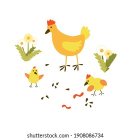 Cute cartoon illustration with poultry family - a mother hen and two little funny chicks in a farm meadow with dandelions, beans and worms. Vector illustration isolated on white background