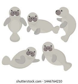 Cute cartoon manatee on white background.