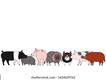 cute cartoon pig breed group